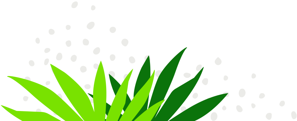 Leaves Texture